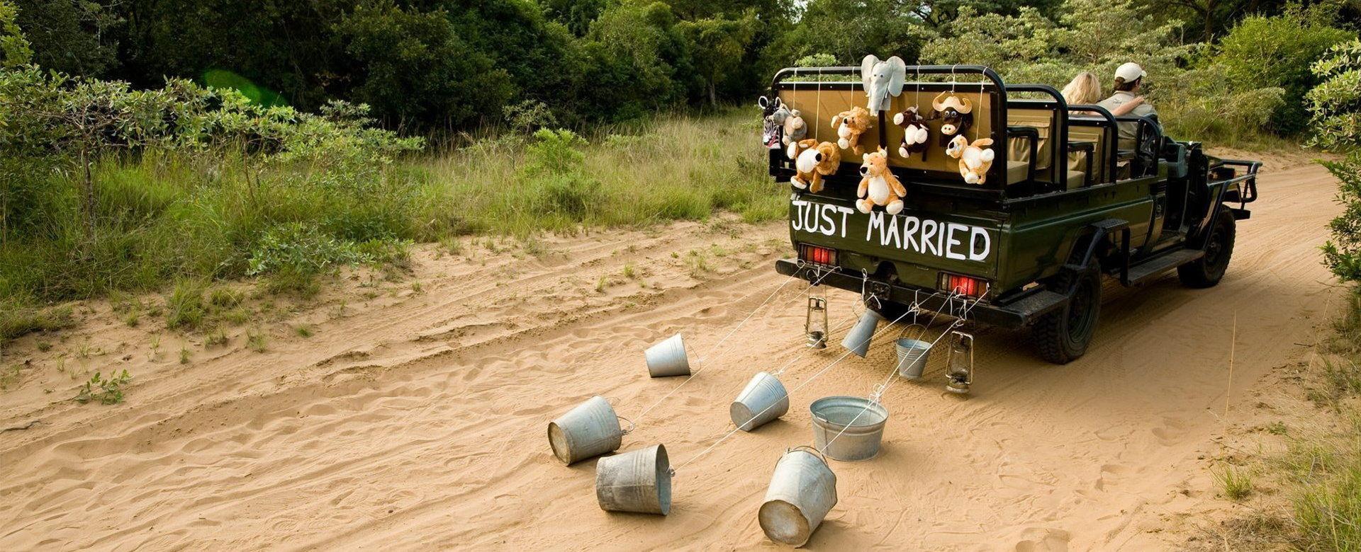 Honeymoon Safaris - Just Married