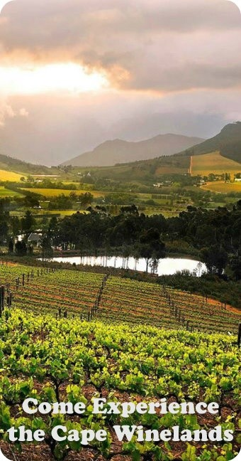 Cape Winelands Hotels and Tours