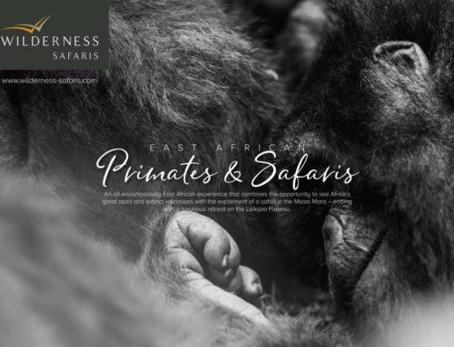 East African Primates & Safaris