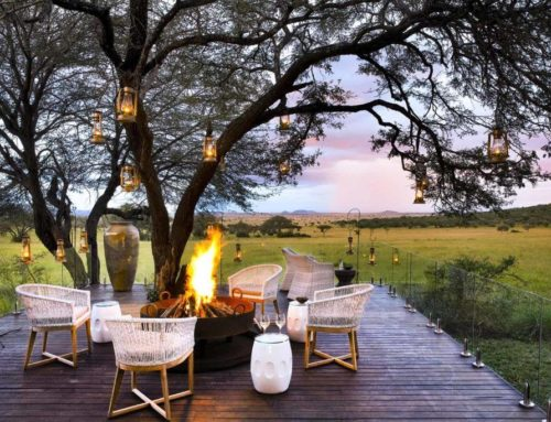 The Serenity of Singita Serengeti House