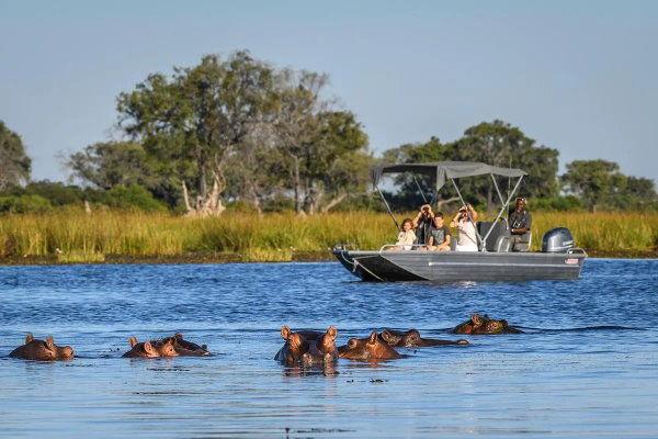 African Safaris Boating in Okavango Delta