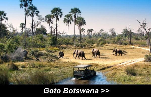 Goto Botswana