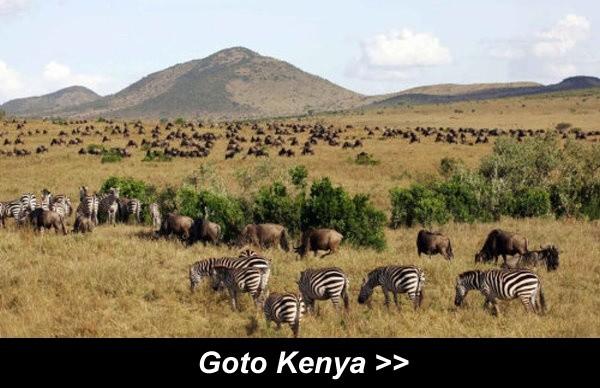 Goto Kenya