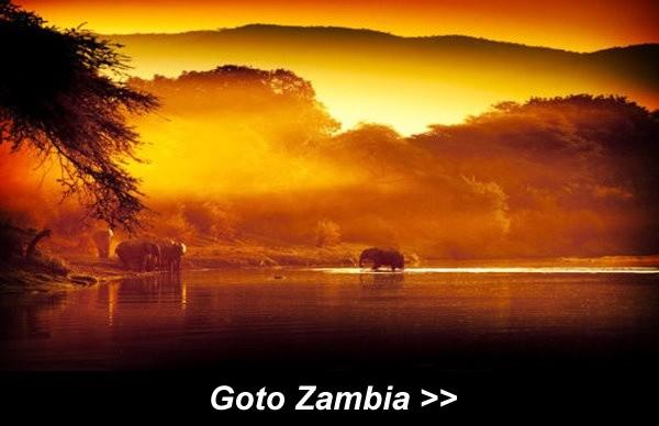 Goto Zambia