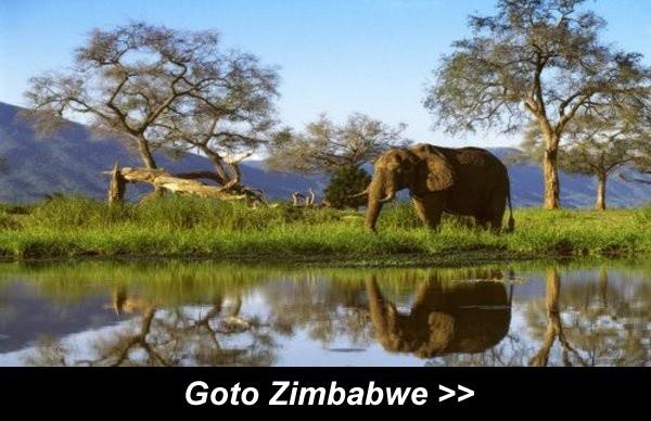 Goto Zimbabwe
