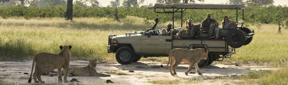 Authentic African Safaris