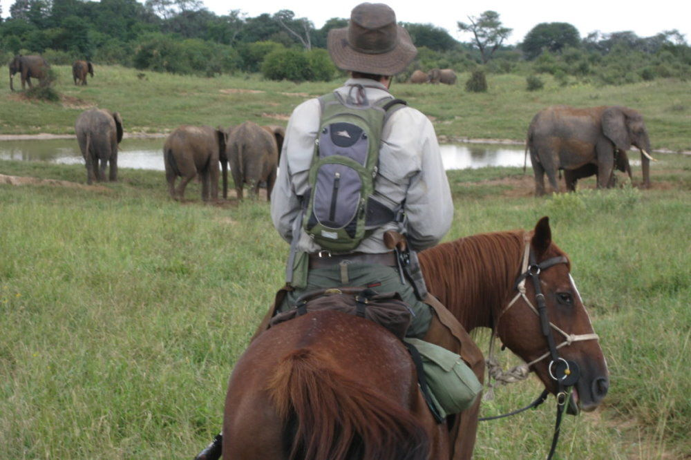 Ride Hwange Horseback Safari
