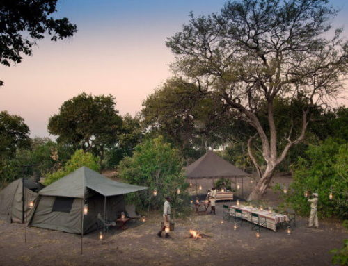 Botswana Classic Explorer Expedition