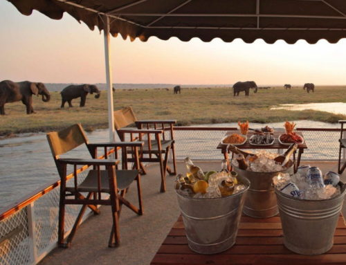 Botswana Mini Explorer Expedition