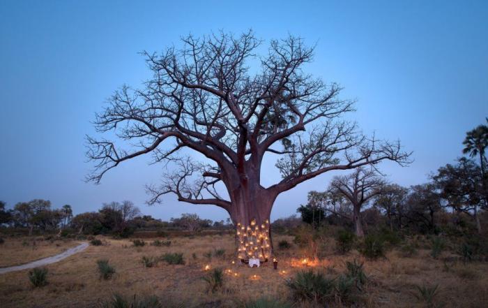 Botswana long stay offer