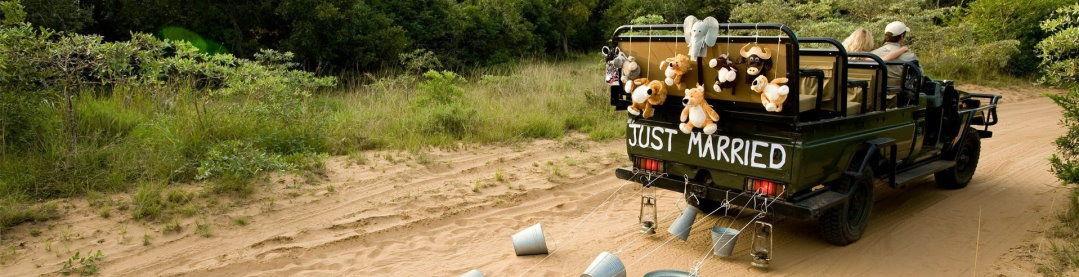 Honeymoon Safari offer