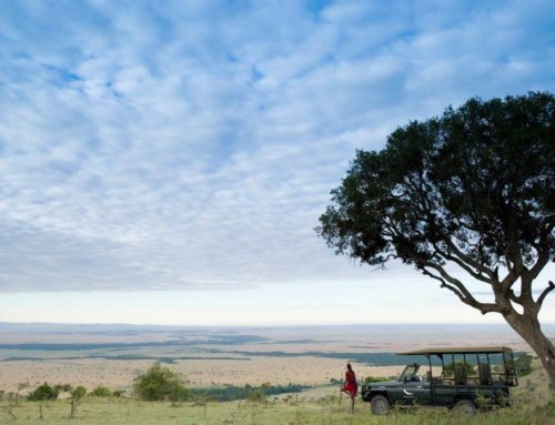 Kenya long stay offer
