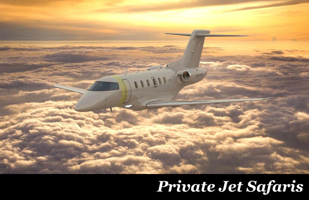 African Safaris Private Jet Safari