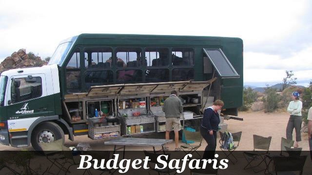 Budget Safaris