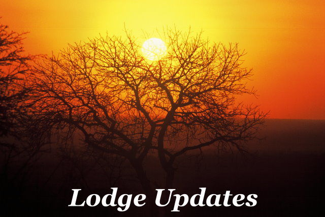 Lodge Updates Taga Safaris