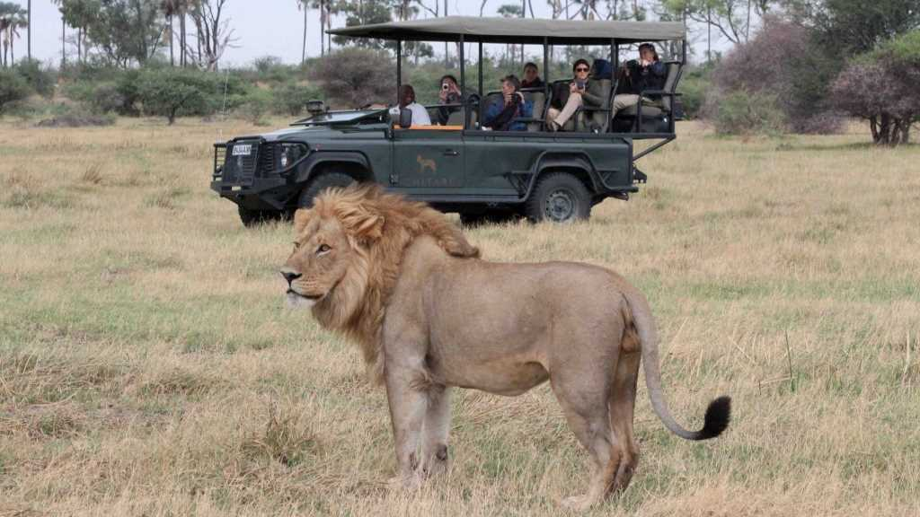 Recommended Safaris and Tours to Botswana