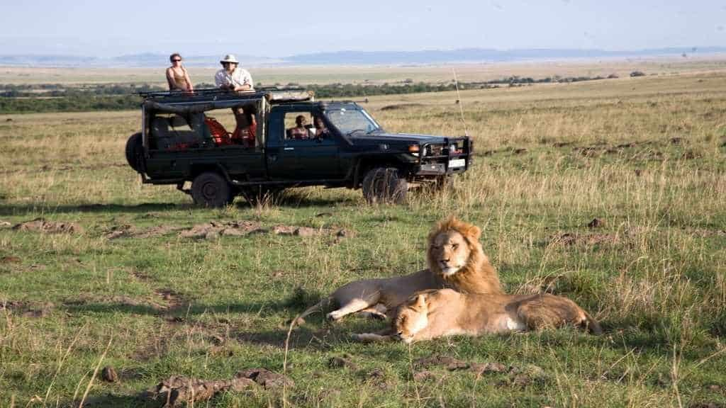 Recommended Safaris and Tours to Kenya