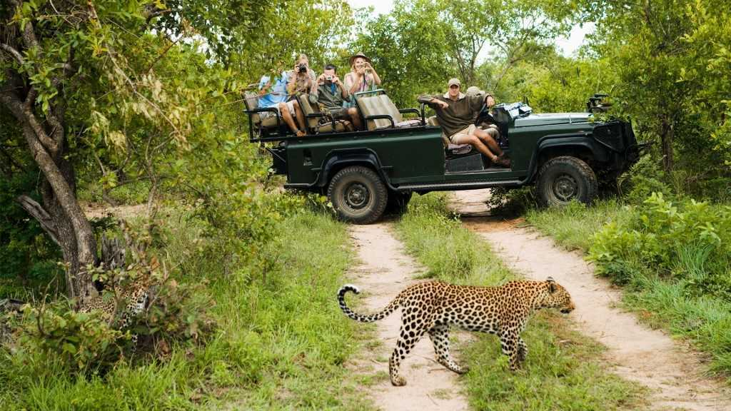 Recommended Safaris and Tours to South Africa