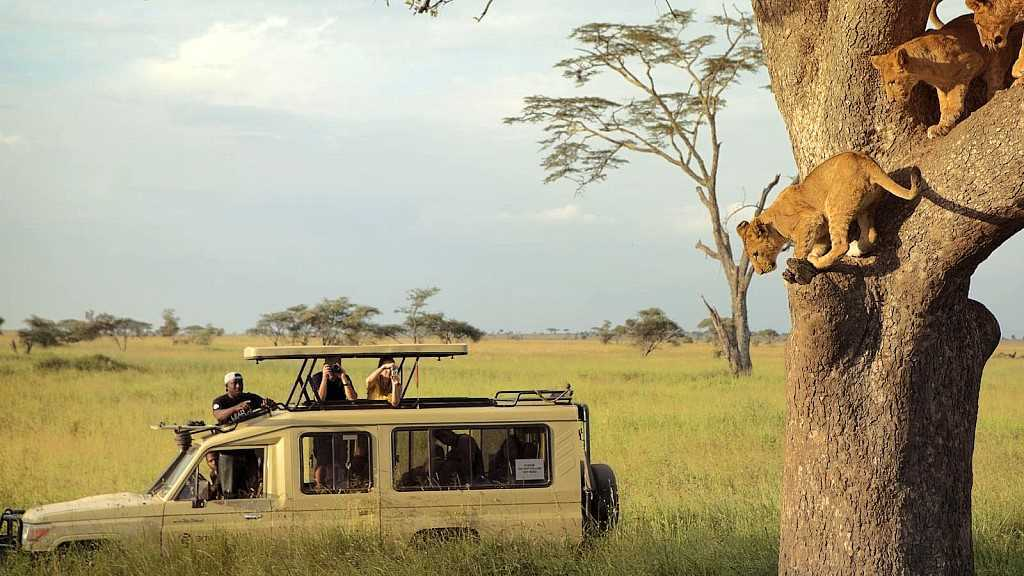 Recommended Safaris and Tours to Tanzania