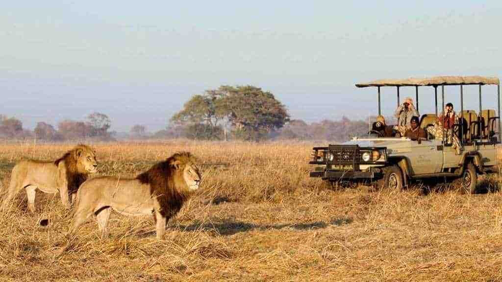 Recommended Safaris and Tours to Zambia