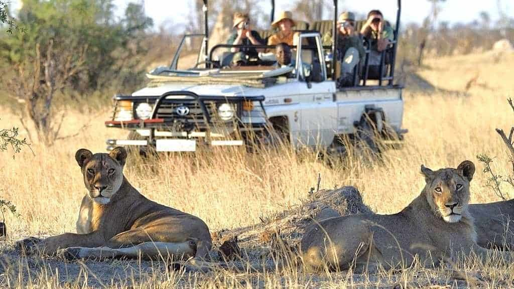 Recommended Safaris and Tours to Zimbabwe