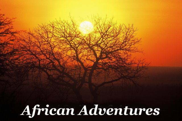 African Adventures Taga Safaris