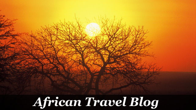 African Travel Blog by Taga Safaris