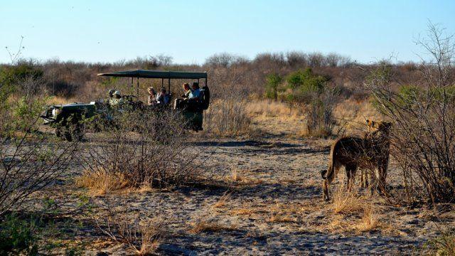 Kwando Reserve