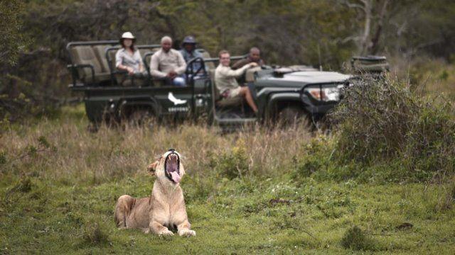KwaZulu Natal Game Reserves