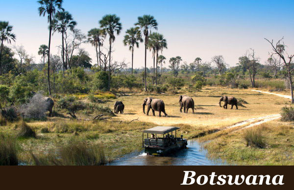 Botswana Safaris with Taga Safaris Africa