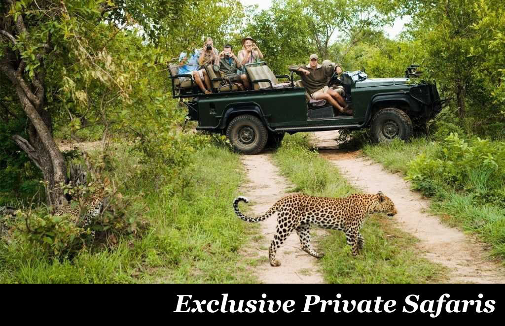Exclusive Private Safaris by Taga Safaris Africa