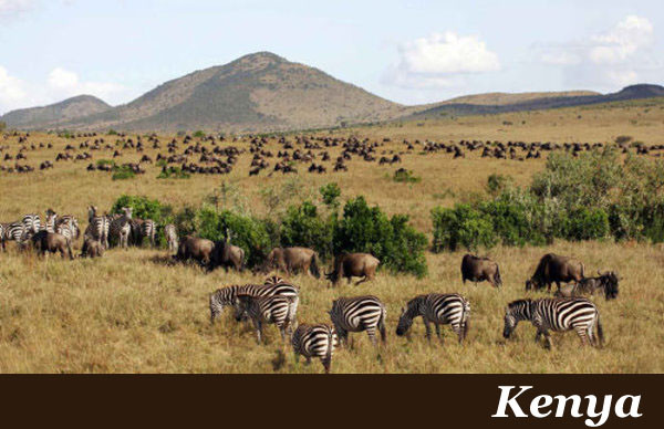 Kenya Safaris with Taga Safaris Africa