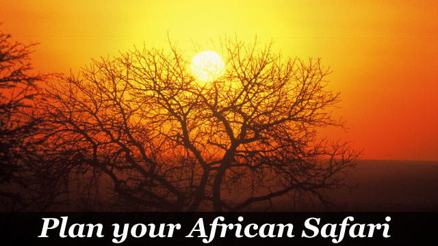 African Safari Planner