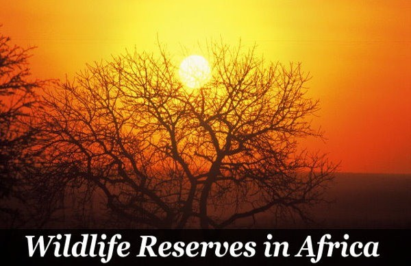 Wildlife Reserves in Africa