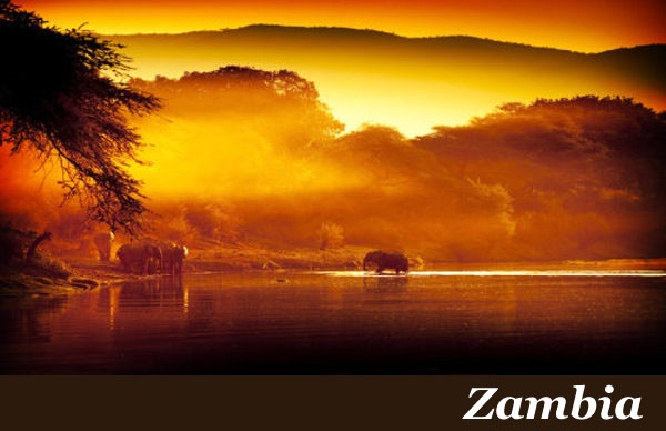 Zambia Safaris with Taga Safaris Africa