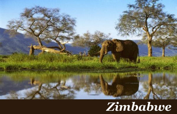 Zimbabwe Safaris with Taga Safaris Africa