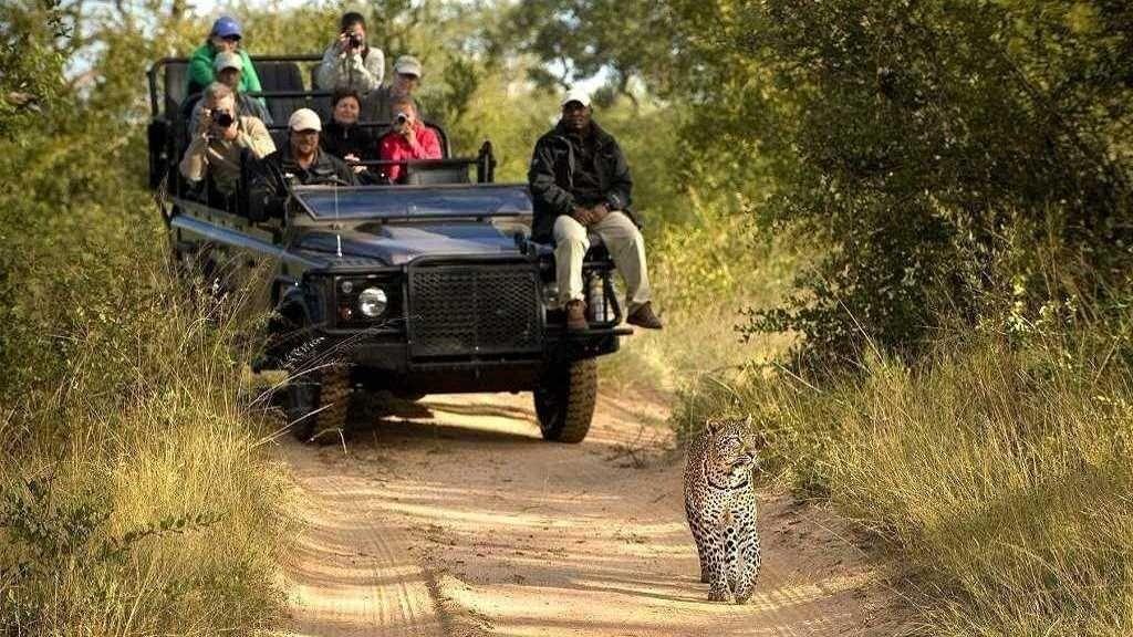 Ultimate Africa Safaris