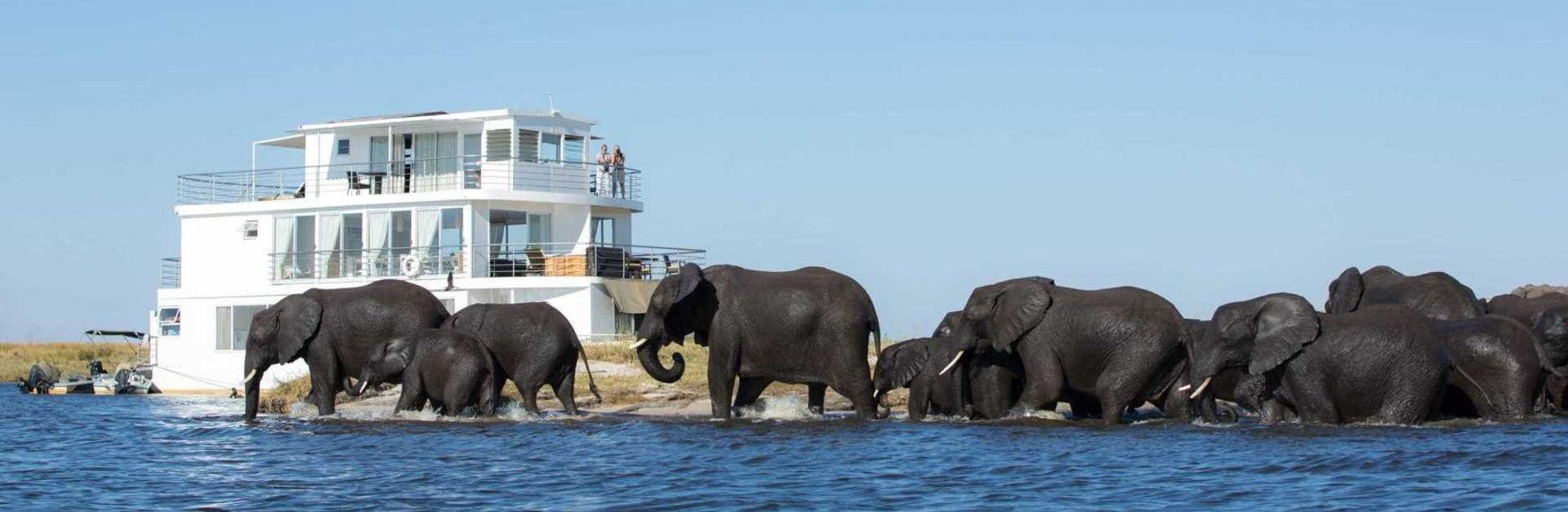 Tailormade Safaris Chobe River Houseboats